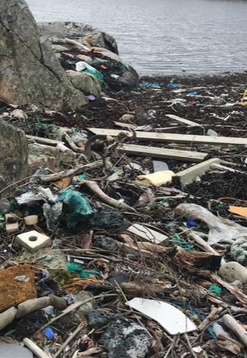 Plastplukking