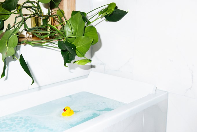 Badekar med vann, skum og badeand. Grønn plante i vinduskarmen. Bilde