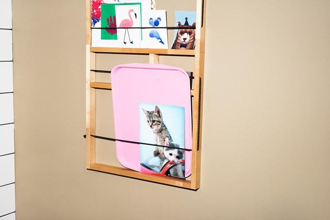 Bilde av vegghylle med plastbrett og kort med motiv av ulike dyr.